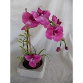 Orchidea- lila